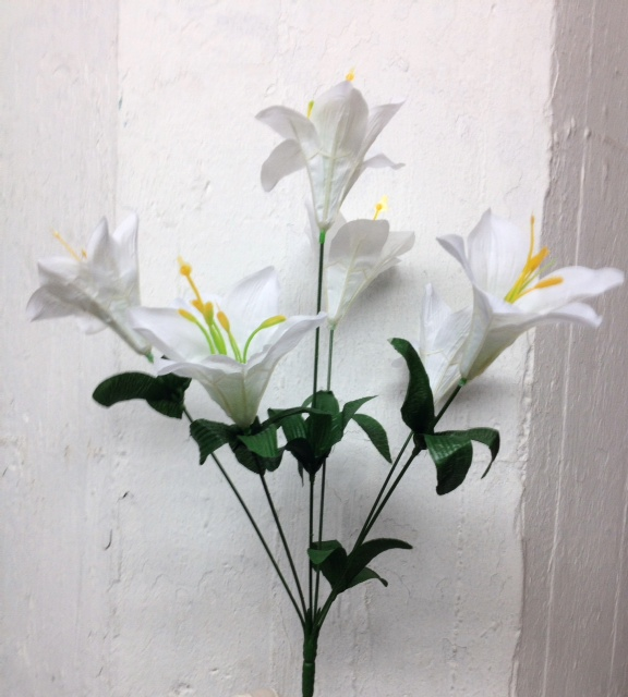 new lily bushes k9626w